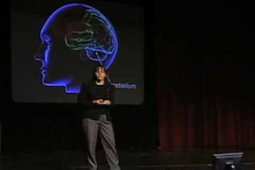 Lecture: Building a Circuit-Diagram for the Brain (Jennifer Raymond)