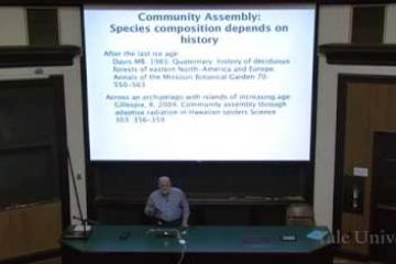 Lecture: Ecological Communities